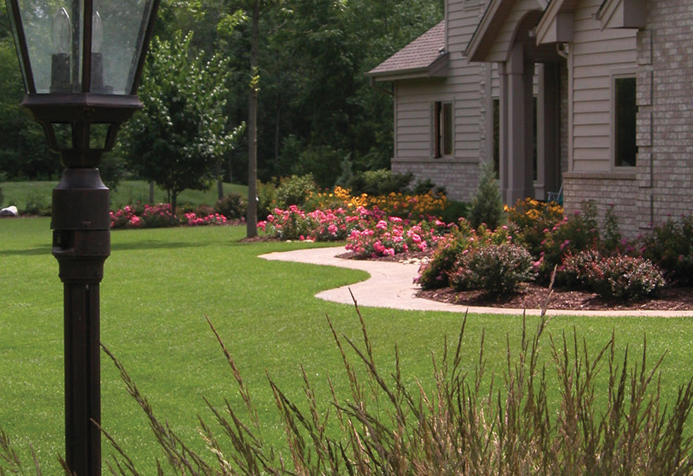 Why You Need a Landscape Management Company