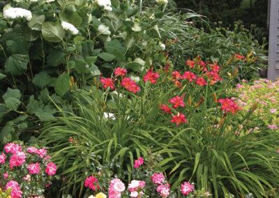 PlantGrouping